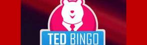 Ted Bingo Casino Review